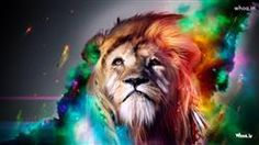 Multi Color Lion Face Art HD Animal Art Wallpaper,Animal Art Wallpaper,Animal Photography Wallpaper,Wild Life Animal Wallpaper,Art Wallpaper