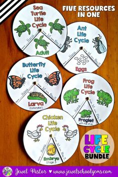 Life Cycles Bundle (Ants, Butterflies, Chickens, Frogs and Sea Turtles) by Jewel Pastor (TeachersPayTeachers) | This Life Cycle Wheels Bundle contains five wheel packets to help your students review what they have learned about the life cycle of ants, butterflies, chickens, frogs and sea turtles. | Get the individual life cycle wheels or buy this bundle to save!