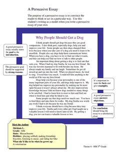essay reasons why people work