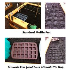 Square foot gardening templates using muffin tins.