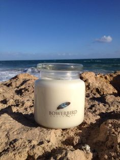 Bowerbird Collector 100+ Hour Burn time Soy Candles $29.00 for 1 candle 10% discount for 2 candles 15% discount for 3 candles Scents Brandied French Pear Mediterrean Fig Green Tea and Lemon Vanilla Bean Coconut and Lime Citronella and Lemongrass (100+ hours only)  http://bowerbirdcollector.com.au/