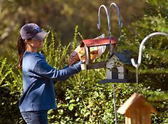 how to keep grackles away from your bird feeders