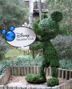Disney Vacation Club...ahhh...someday ill be welcomed home