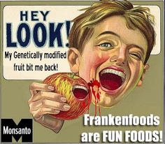 I don't actually mind genetically modified foods, though I think this was part of an anti-Monsanto campaign. Gmo Facts, Genetically Modified Food, Valeur Nutritive, Think Food, Foods To Avoid, Genetics, Whole Food Recipes, Healthy Recipes, Quick Recipes