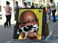 Jokes only South Africans will understand. Millions of South Africans of all races are furious with President Zuma and want him out ! The ANC took a solid beating in the recent municipal elections and were voted out in all major Metros African Memes, African Quotes, African History, News South Africa, Cape Town South Africa, Genius Quotes, Beaches In The World, Twisted Humor, Funny Dogs