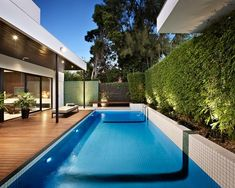 belle piscine et brise-vue bambou dans le jardin moderne