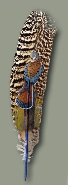 Hand Painted Feather by Julie Thompson (Sparrowhawk)