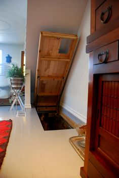 """Cat door and hatch door to """"kitty room"""" in the basement. (This would be so cool for access to a basement that isn't used much. Basement Doors, Attic Doors, Attic Stairs, Open Basement, Basement Storage, Basement Finishing, Basement Ideas, Basement Ceilings, Attic Ladder"""