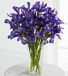 The Iris Riches Bouquet is a slender vase filled with bold blue iris. This vase of blue flowers is available all year long and is florist delivered. Easter Flowers, Iris Flowers, Silk Flowers, Buy Flowers, Flower Bouquets, Purple Flowers, Online Flower Delivery, Same Day Flower Delivery, Spring Blooms