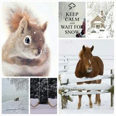 Wait for snow #Moodboards #Mosaic #Collage