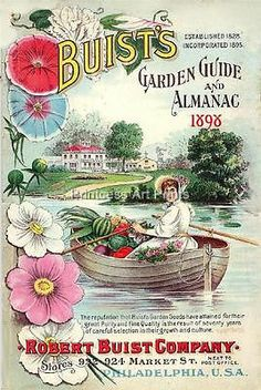 Buist Vintage Seed Catalogue Fruit Vegetable Flowers Set of 3 Full Color Prints | eBay