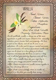 Printable Herbs Book of Shadows Pages Set Herbs & Plants Correspondence, Grimoire Pages, Witchcraft, Wicca, Printable BOS – Magic herbs – Home Recipe Wicca Herbs, Witchcraft Herbs, Witchcraft Spell Books, Green Witchcraft, Magick Book, Wiccan Spells, Magic Herbs, Herbal Magic, Plant Magic