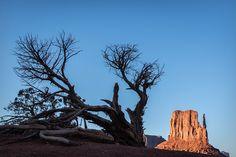 Participa hasta el 31 de agosto en el XI Concurso de Fotografía El Foton elfoton.com #elfoton15 #Paisaje Usuario: mpereda (Estados Unidos) - Monument Valley - Tomada en Monument Valley (Utah) el 13/10/2013 #photos #travel #viajes #igers #500px #Picoftheday #Fotos #mytravelgram #tourism #photooftheday #fotodeldia #instatravel #contest #concurso #instapic #instaphoto #EstadosUnidos #MonumentValley #Utah #USA #America #NorthAmerica Monument Valley, Utah, Nature, Travel, Pageants, August 31, Pageant Photography, Scenery, United States