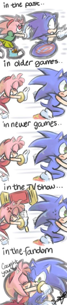 "HA! Can't get much truer than that.  I lay my personal shipping opinion upon this quote from another:  ""Among the reasons why I'm a SonSal shipper. Amy deserves someone who will give her all the romance and obsessive attention she craves, and Sonic and Sally have been a team since they were kids."""
