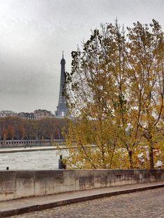 Beautiful view. Tour Eiffel. Paris.