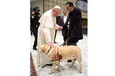 El Papa bendijo a un periodista no vidente y a su perro - lanacion.com