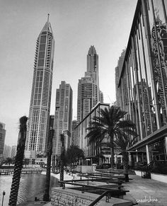Fame Dubai Home - FameDubai Magazine Dubai Tourism, Dark City, Visit Dubai, City Painting, Dubai Mall, Iphone Photography, Palm Trees, Light In The Dark, New York Skyline
