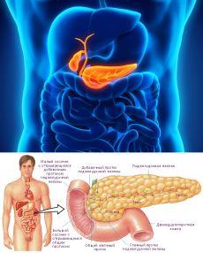 4 самых простых и эффективных рецепта для лечения поджелудочной железы, о которых врачи умалчивают