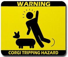 Cool Stuff: Corgi Love | More Ways to Waste Time
