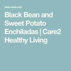 Black Bean and Sweet Potato Enchiladas | Care2 Healthy Living