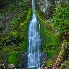 Marymere Falls, Lake Crescent, WA