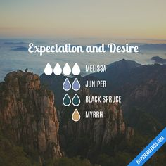 Expectation and Desire — Essential Oil Diffuser Blend