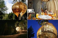 Just discovered this: The Redwoods Treehouse restaurant, only 45 minutes north of me in Auckland, New Zealand! Must find a way to get a group together...