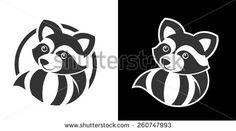 Raccoon Photos et images de stock | Shutterstock