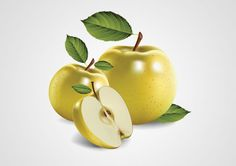 Apple Free Vector #vector #freevector