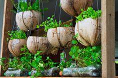 Refresh your garden decor with some original handmade DIY garden pots. See how fast, easy and economical to make an original pots for the garden. Herb Garden, Garden Pots, Vegetable Garden, Garden Ideas, Garden Web, Bottle Garden, Herb Pots, Easy Garden, Garden Design