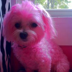 My pink girl. :)