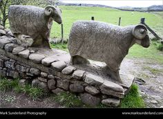 Sheep Sculpture near Low Force Upper Teesdale County Durham England | Flickr - Photo Sharing!
