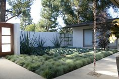 A garden for the desert that is Southern California.