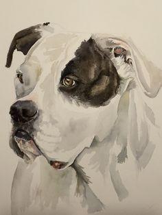 Watercolor American Bulldog, Lucy  - Jan Riggins Watercolor Animals, Watercolor Paintings, Dog Art, Art Boards, Watercolors, My Arts, Living Room, American, Drawings
