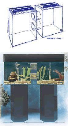 1000 images about fish on pinterest aquarium aquarium for Tube fish tank