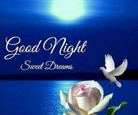 Good Night Images Wallpapers for Whatsapp Cute Good Morning Quotes, Good Morning Happy Sunday, Good Day Quotes, Good Morning Picture, Good Morning Greetings, Morning Pictures, Good Morning Gif, Night Pictures, Happy Monday