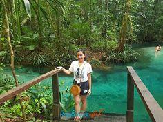 VISIT RAJA AMPAT INDONESIA www.rajaampat.biz #rajaampat #rajaampatbiz #travel #indonesia #tourindonesia #travelindonesia #visitindonesia #indonesiatravel #wonderfulindonesia #vacation #Индонезия #journey #holiday #bali #インドネシア Bali, Journey, Tours, Vacation, Holiday, Travel, Voyage, Vacations, Vacations