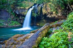 Iron Creek, WA - Gifford Pinchot National Forest