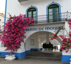 Pink Bougainvillea grows outside Harbour building at Puerto De Mogan, Gran Canaria, Canary Islands.