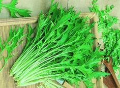 Mizuna má vysoký obsah vitamínu C, draslíku a vápníku, listy jsou ideální do salátů i na dušení Herbs, Pictures, Herb, Medicinal Plants