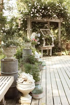 erin's art and gardens: back deck abloomin!