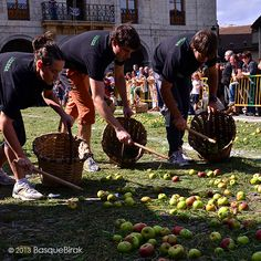Sagar uzta eguna Astigarragan. .............................................. Concurso de recogida tradicional de manzana. ............................................... Traditional apple picking contest. .............................................. Compétition de ramassage traditionnel des pommes à cidre .............................................. www.basquebirak.com #astigarraga #donostia #sansebastian #basquecountry #ciderhouse
