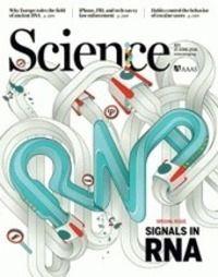 What Controls Organ Regeneration?