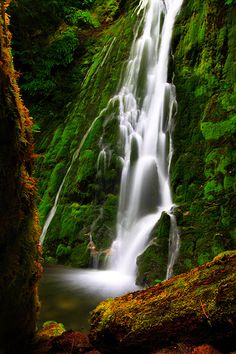 USA, Washington, Olympic National Park, Lake Crescent, Madison Falls.