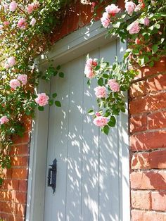 beautiful roses around door - couldn't be a high-use door though, due to thorns?!