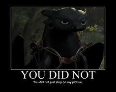 Another Toothless Poster by ZayraMoonshimmer.deviantart.com on @deviantART