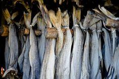 Stockfish / Dried cod (Stoccafisso / Baccalà)