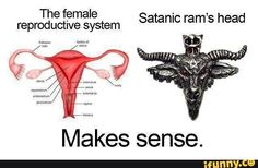 21 New Ideas For Funny Memes About Girls Periods Schools Funny Images, Funny Pictures, Period Humor, Period Funny, Funny Picture Jokes, Reproductive System, Humor Grafico, Funny As Hell, Good Humor