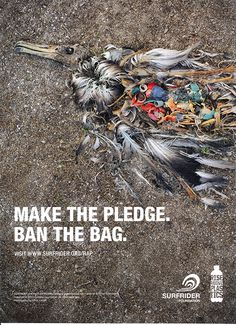 "Please watch the doc/film ""Bag It""  It drastically changed how I live my life. Fair warning: If you love animals you'll cry, then you'll stop using plastic bags and a good amount of plastic in general.  Please open your eyes. Your actions affect others. Be The Love."