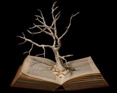 Book Sculpture Unkindled Growth Photographic by FromWithinABook, £10.00